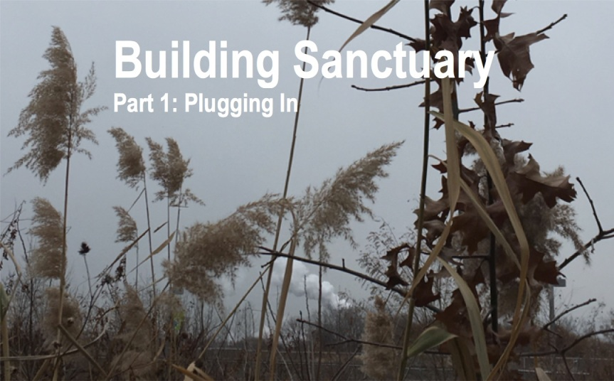 Building Sanctuary: A Dystopian Future We Must Fight ToAvoid